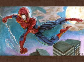 Swing it Spidey Swing it by dabean