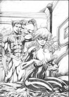 SPIDERMAN AND BLACK CAT by miltonwiller