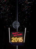 New Years' Day 2015 2 by uglygosling