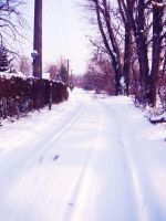 Road into the Unknown by Bonnyflower
