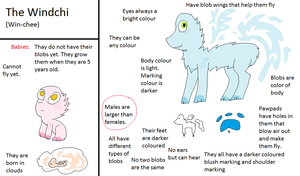 Windchi Reference {CLOSED SPECIES} by GalaxyGoats