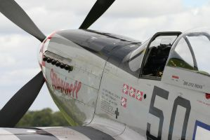 close up with p51 marinell by Sceptre63