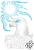 White Eagle Spirit by EagleFlyte