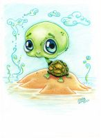 Tortuga by WityWillow