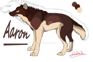 Aaron: Reference Sheet by Nafsi-chan