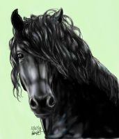 Friesian - FINISHED by stargate4ever23