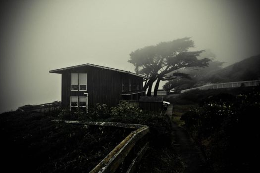 Point Reyes - Home by xdgrace