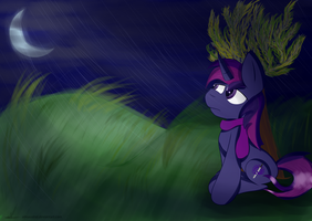 In the rain by almaustral