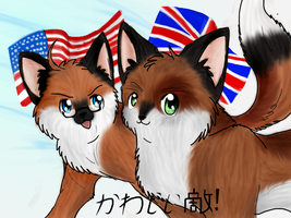 America and England Foxes by Whitefang45