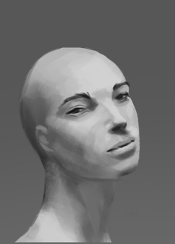 Face Practice by Ereyod