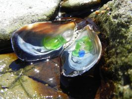 Muscle Shell with Sea Glass 4 by Samela7