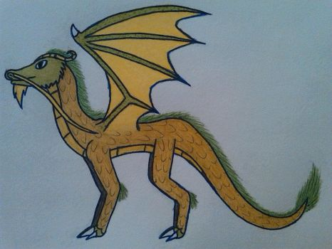 Bearded Dragon by DragonMage156