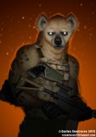 Hyena by face-in-the-sky