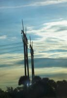 powerlines by MEGANxBALLINx3