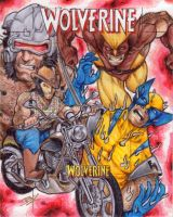 Wolverine Artist Proof by Ethrendil