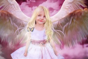 The fairy angel by annemaria48