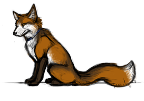 Fox by thaily