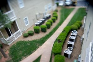 Tilt Shift Test by LDFranklin