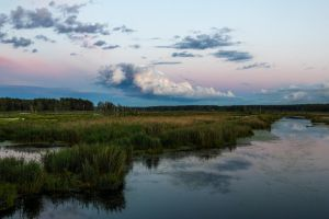 Sunset on the marshes by xplodr