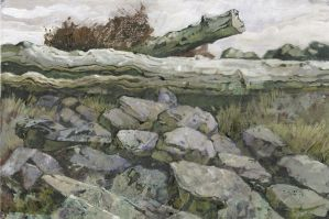 Wood and Rocks by JohnPatience