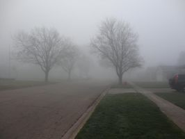 Foggy Day '12 05 by DNLnamek01