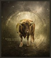 Zodiac Taurus by ThelemaDreamsArt