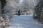 Cycling in the snow by theaver