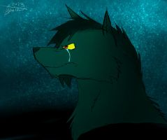 Under The Stars (for princesslove123) by Darkwolfhellhound