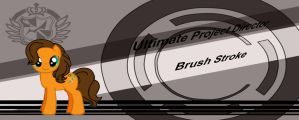 Brush Stroke Ultimate Project Director by Animewolfgamer