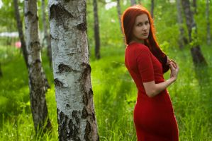 In Red II by Choiseul