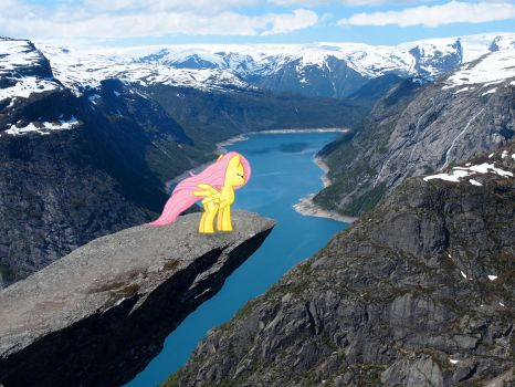 Fluttershy at the top of Trolltunga by Uponia