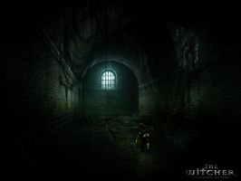 The Witcher Sewers by recluzer