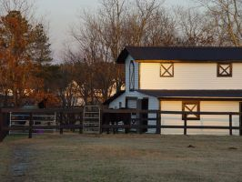 Horse Barn by LinzStock