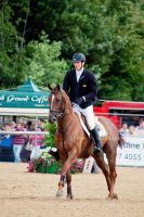 RDS Horse Show 2010 III by clarelyons
