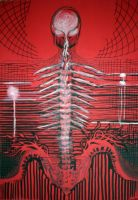 Spine by tomhegedus