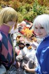Howl + Sophie: wut? XD by palecardinal