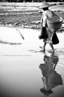 Mother's Step by agungwirawan
