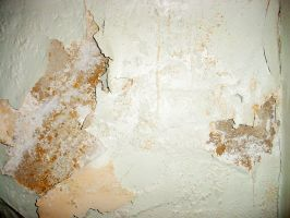 Cracked Plaster Texture by StooStock