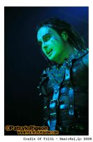 Cradle of Filth 2009 - Dani by MrSyn