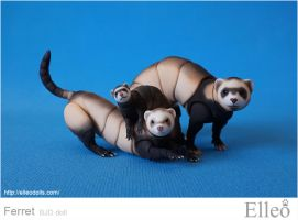 Bjd Ferret 06 by leo3dmodels