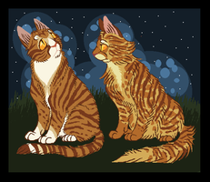 Medicine cats friends by Skelos-kath