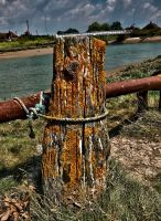 Old pole by forgottenson1