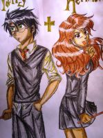 harry and hermy anime by aranelia