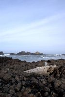 The sea , the rocks , the wood by avatare