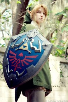 Link - Legend of Zelda: Twilight Princess by LiKovacs