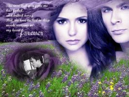 Delena-Forever by The-VampireDiaries