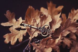 The Skeleton Key by Ur6o