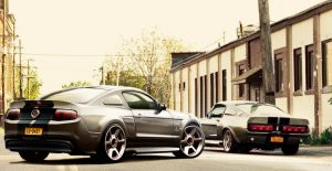 Ford Mustang Eleanors by rookiejeno