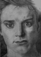 Elijah Wood by XtupidDream