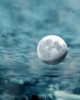 premade background 360 by AshenSorrow